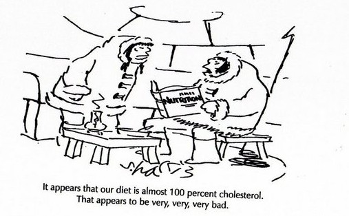 Cholerterol Cartoon